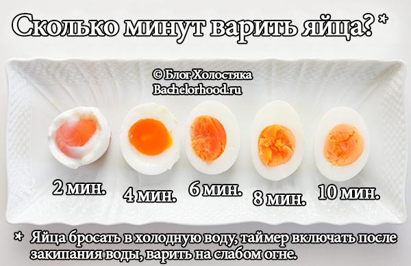 Рецепт свежей квашеной капусты